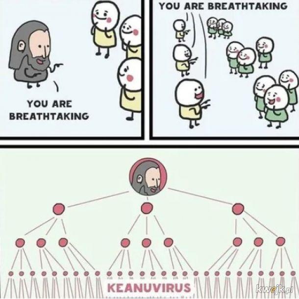 Jesteś powalający