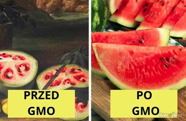 Żywność modyfikowana genetycznie jest taka zła?