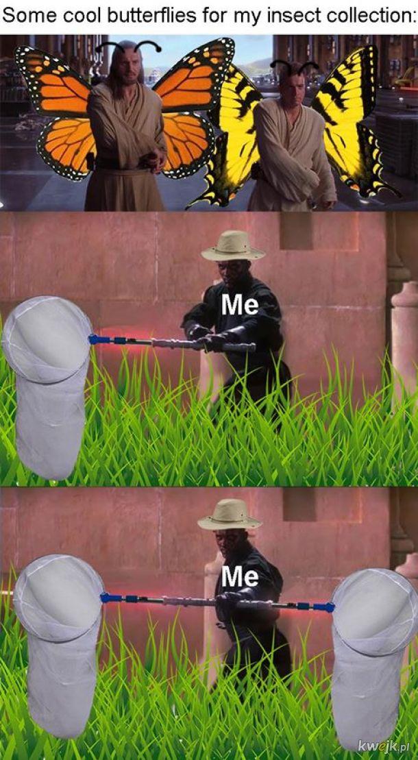 Pożyczone od Entomology memes #2