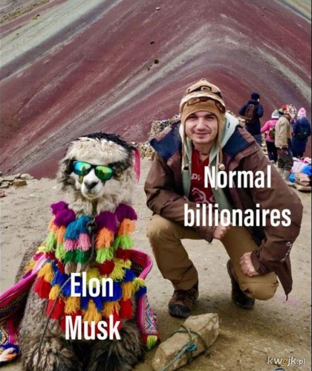 Normalni miliarderzy i Elon