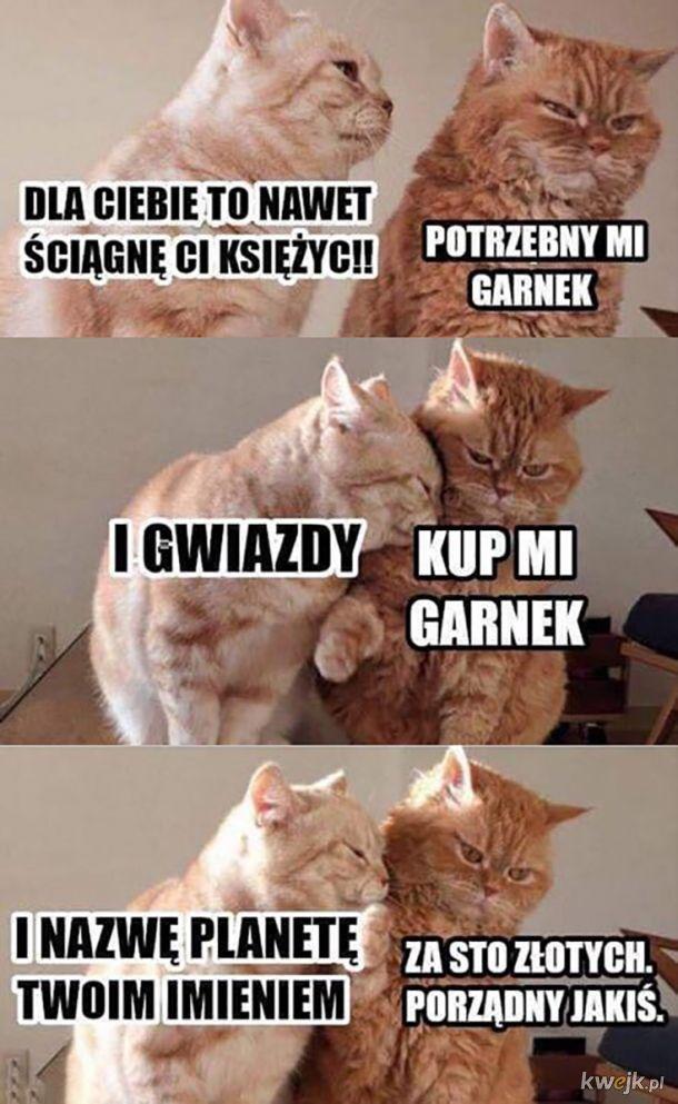 Garneczek