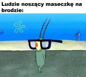 RozkaktuszonyPowiewPieczarki