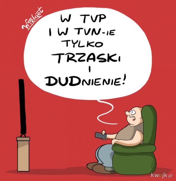 W TVP i w TVN-ie
