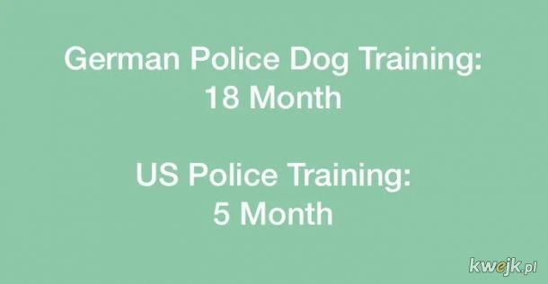Policjant z USA nie ma nawet kwalifikacji aby byc policyjnym psem w Niemczech :)