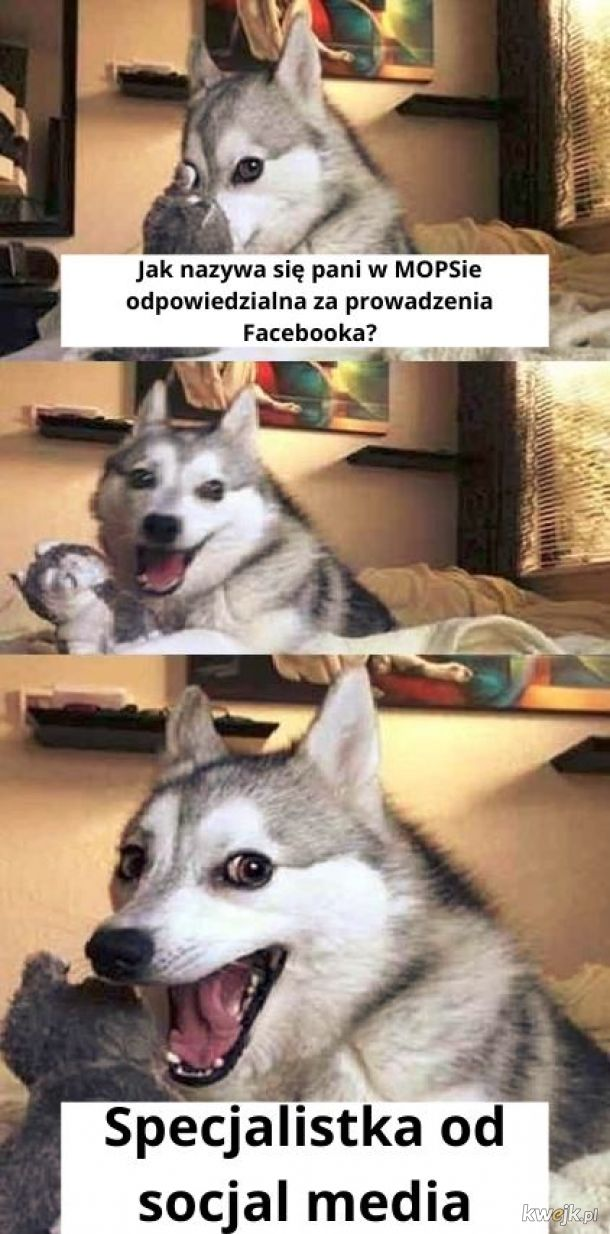 Socjal media