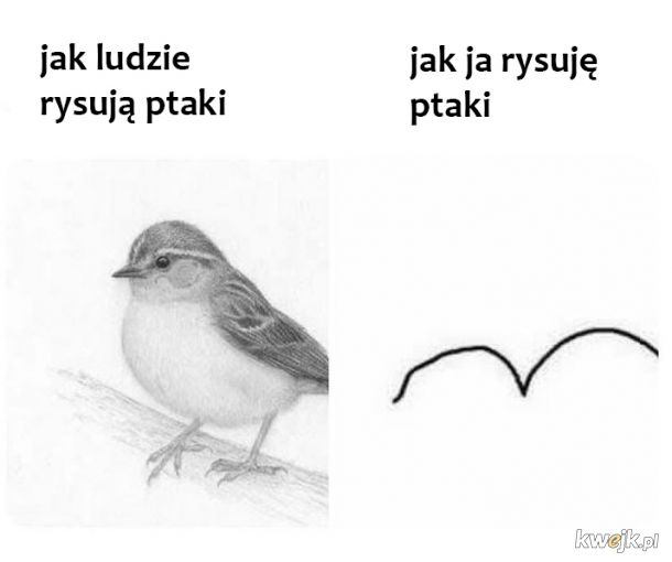 Rysowanie ptaków