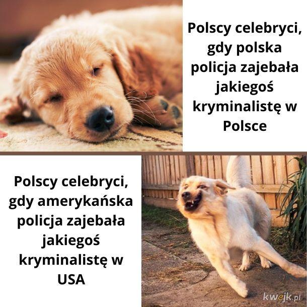 Polscy celebryci