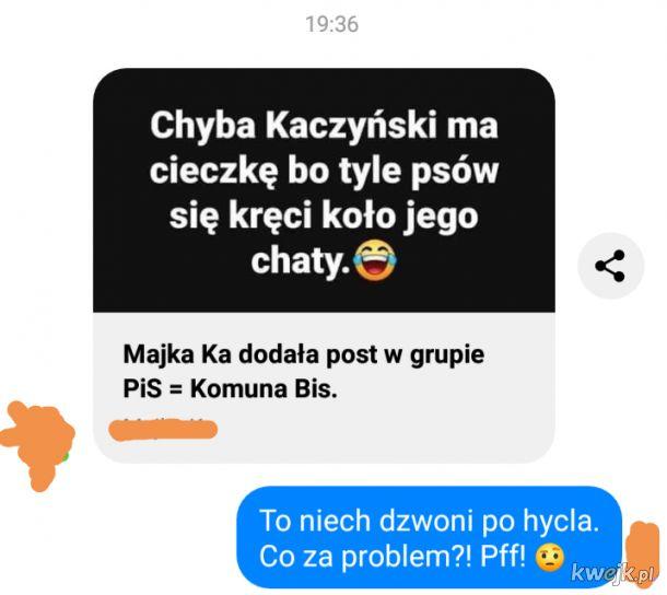 Psy koło domu Kaczyńskiego krążą