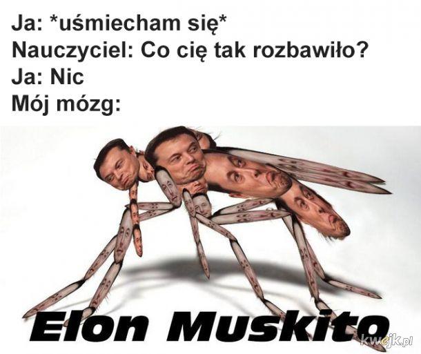 Robi bzz bzz