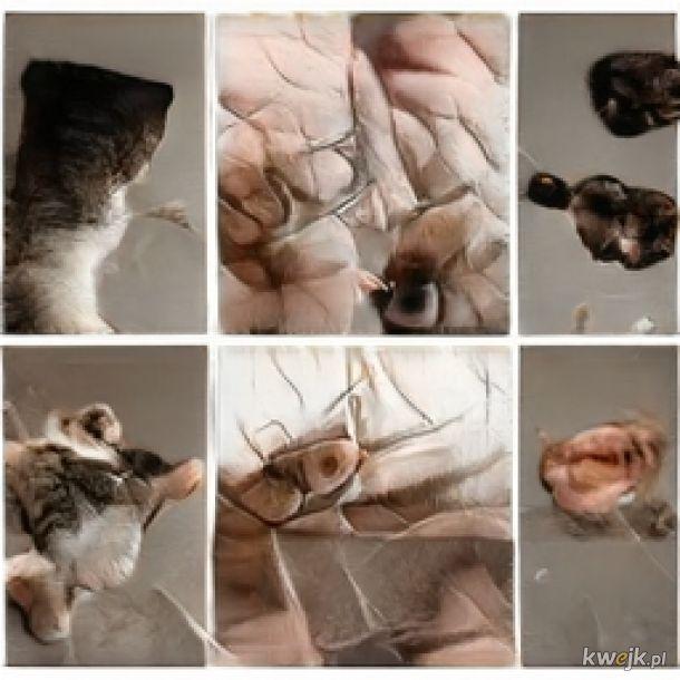 ... (・・?) dziwne koty... #4 gdy razem z kolegami z Czarnobyla macie FaceTime