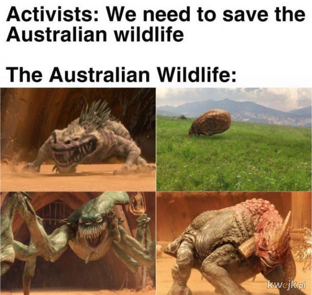 Nie możemy pozwolić, by te stworzenia wyginęły!