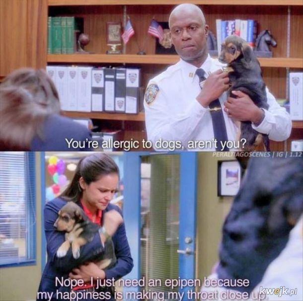 Kiedy uwielbiasz zwierzęta, ale masz na nie alergię.