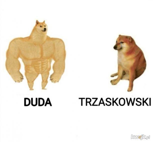 Memy po wyborach, obrazek 24