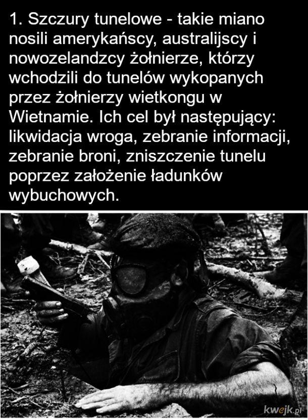 Amerykańscy żołnierze w Wietnamie - Szczury tunelowe