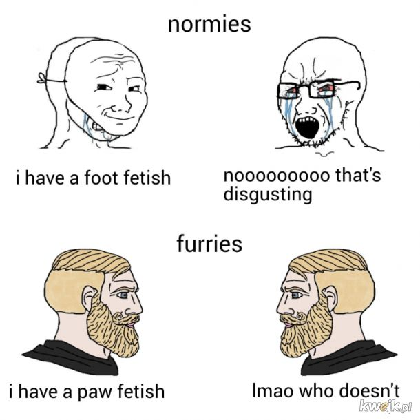 fqing furries