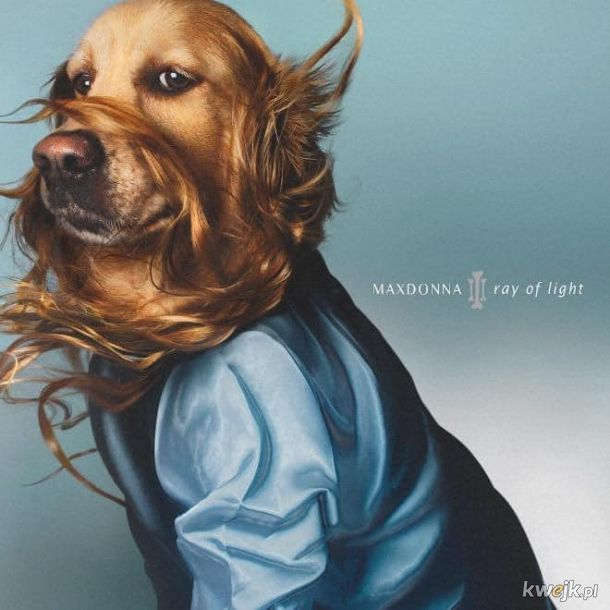 Stylówy Madonny i ich psie interpretacje