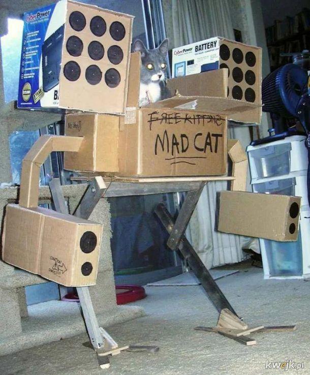 RoboCot