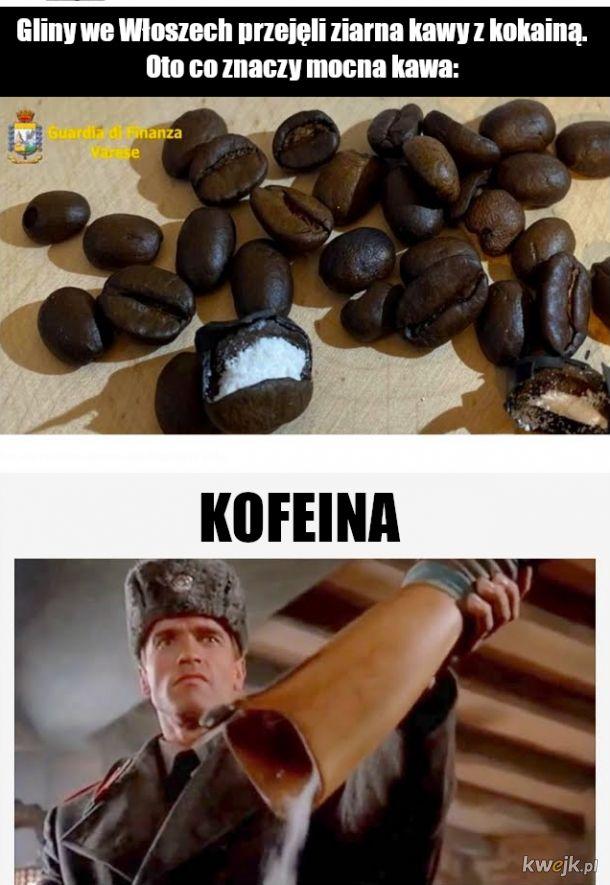Koka koka kofe ina