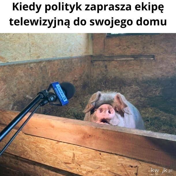 TVP Cribs