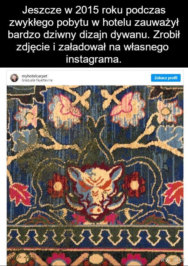Najnudniejszy Instagram na świecie zebrał 400 tys subów: typek fotografuje dywany w hotelach, obrazek 3