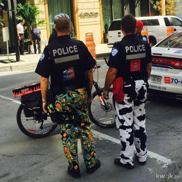Bardzo kanadyjskie zdjęcia, obrazek 4