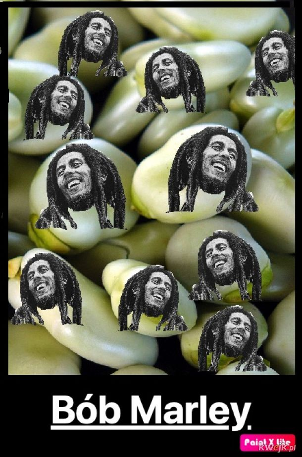 Bób Marley