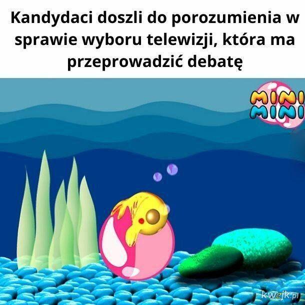 Memy po debatach, obrazek 12