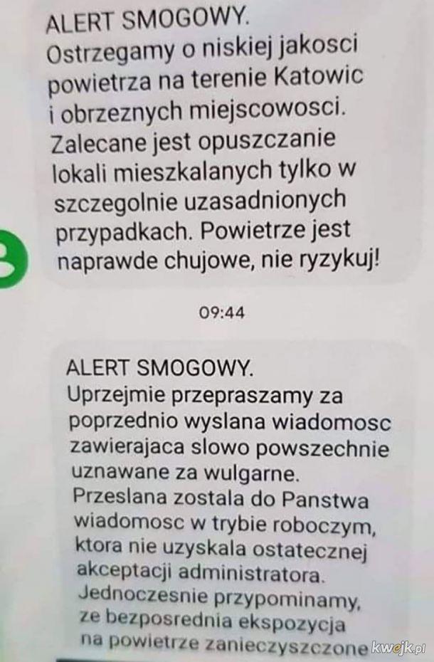 Alert smogowy