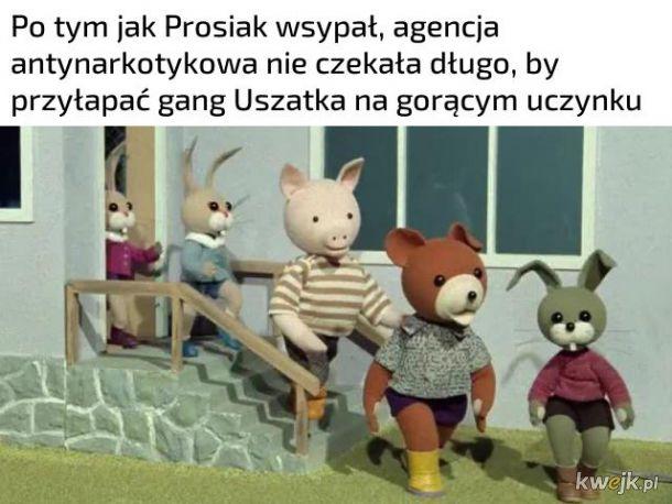 Przypał Uszatka