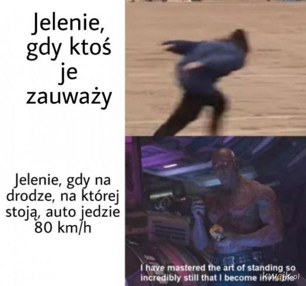 Jelenie