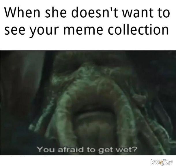 Kolekcja memów