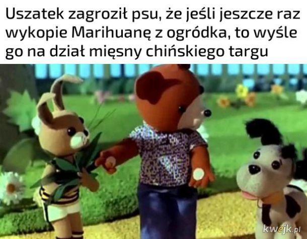 Uszatek