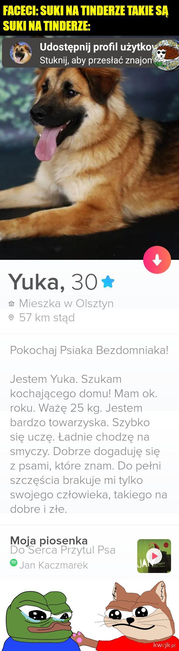 Może ktoś w okolicach Olsztyna ma warunki?