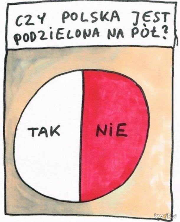 Memy po wyborach, obrazek 9