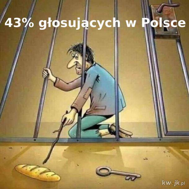 43% głosujących w Polsce