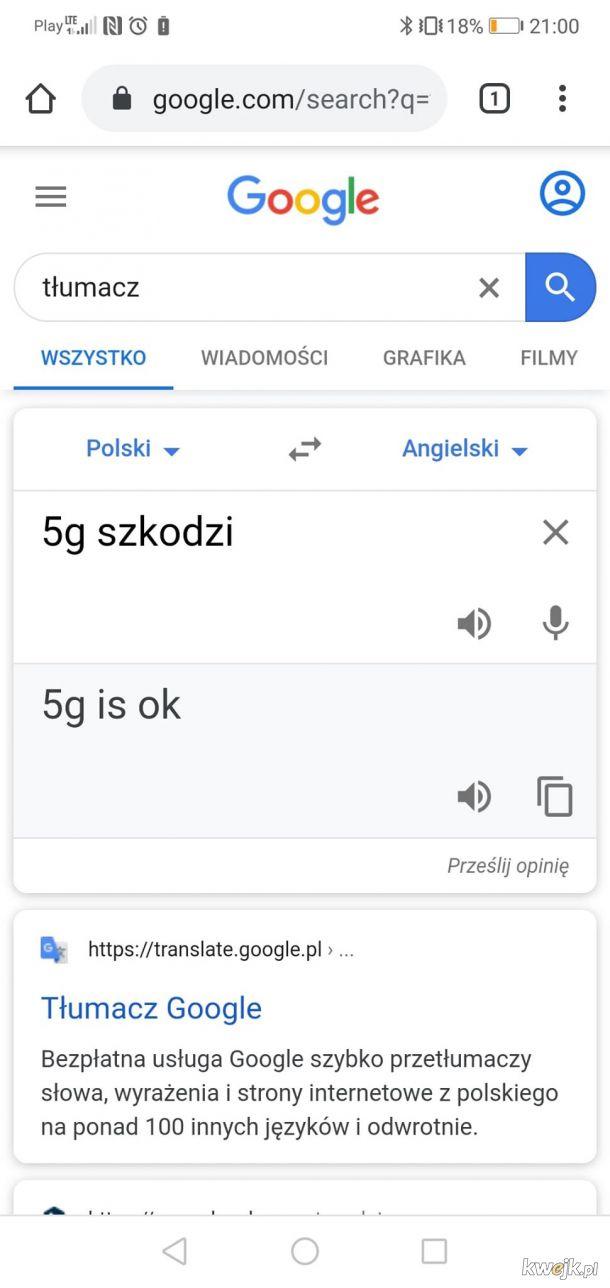 Nawet translator wie lepiej niż szury