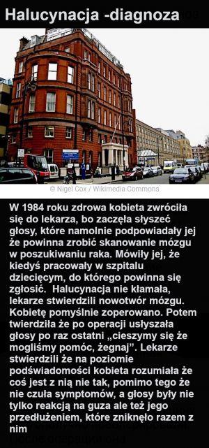raszka007