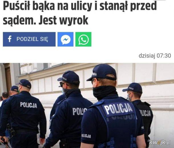 Kryminalista