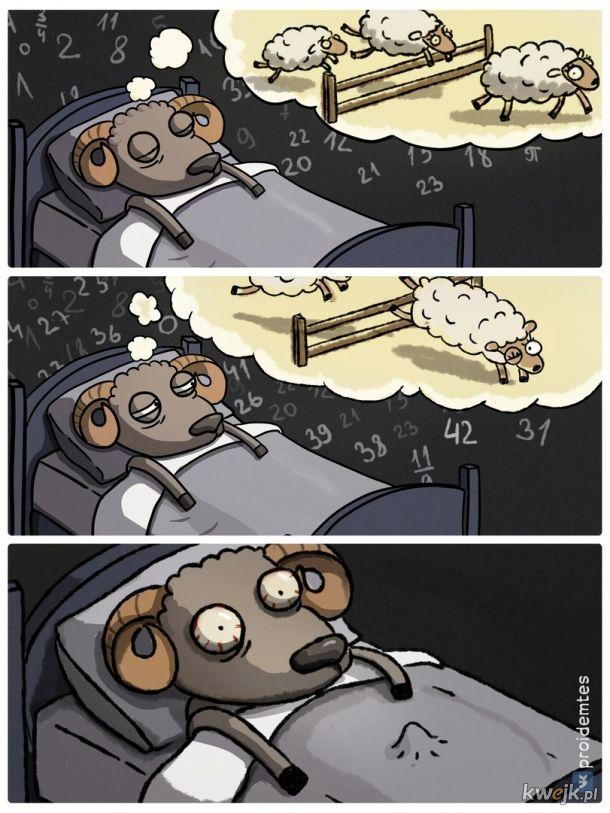 Liczenie owieczek mmhmhmhmhmm