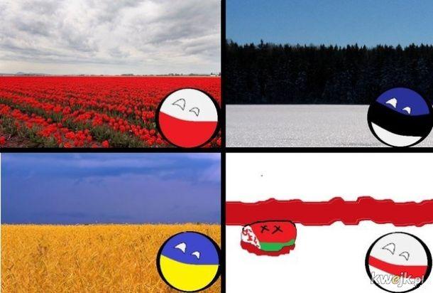 Kolory flag