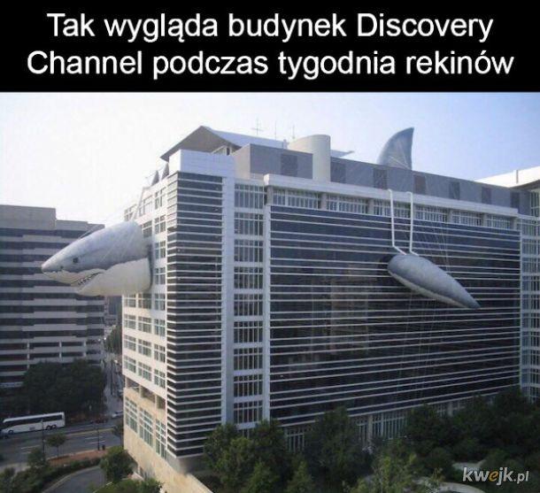 Budynek Discovery