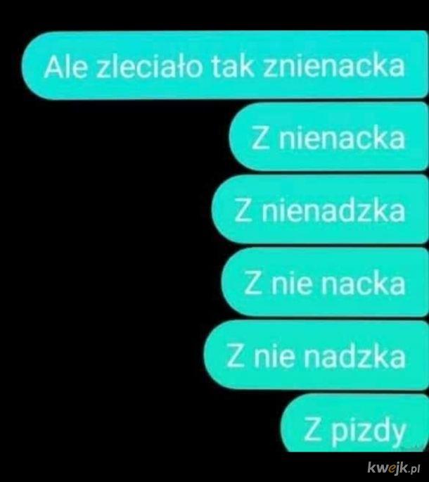 Polska język trudna język