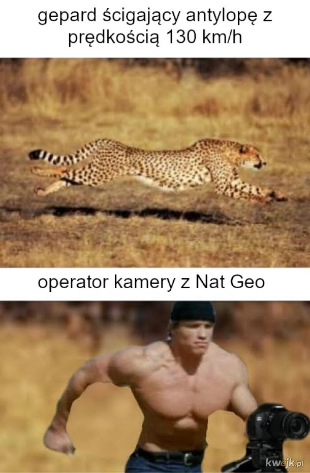 National Geographic to tacy spece