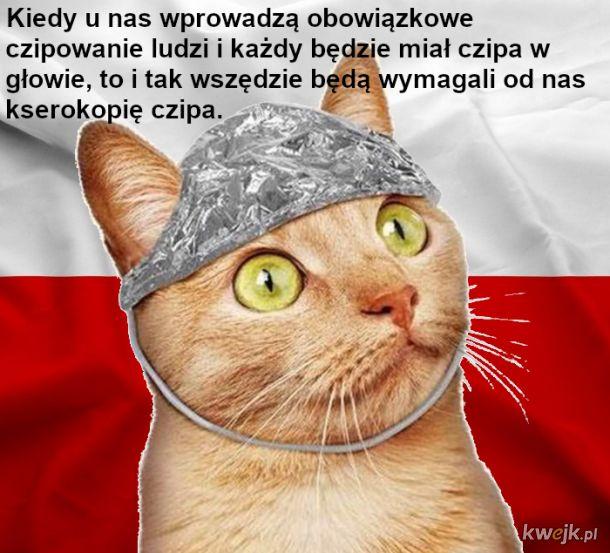 Biurokracja w polskiej placówce, brawo