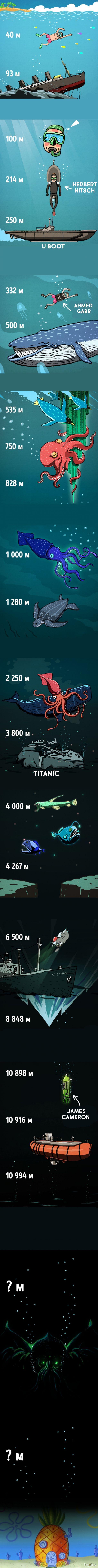 Co występuje w oceanach