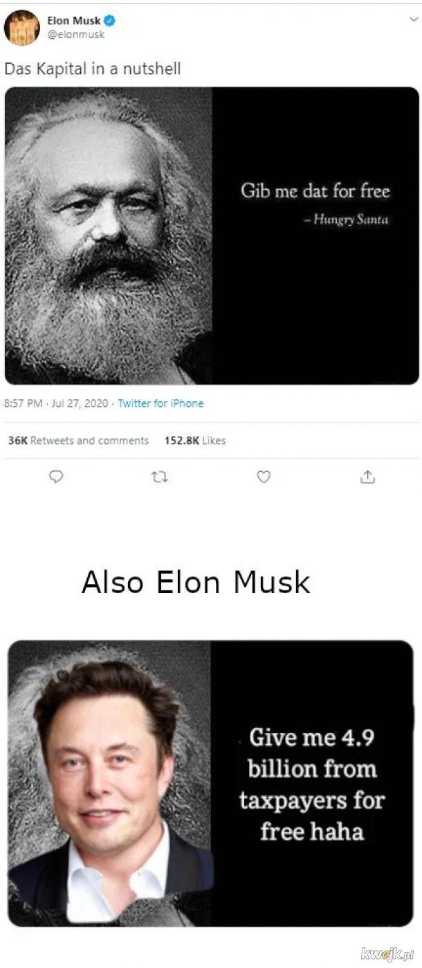 Musk hipokryta