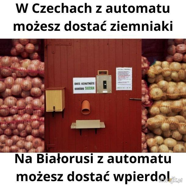 W Czechach stanął automat do sprzedaży ziemniaków