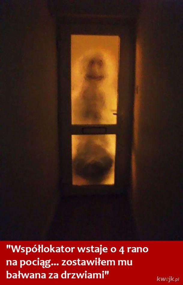 Jak to jest mieszkać ze współlokatorem - te zdjęcia mówią wszystko, obrazek 2