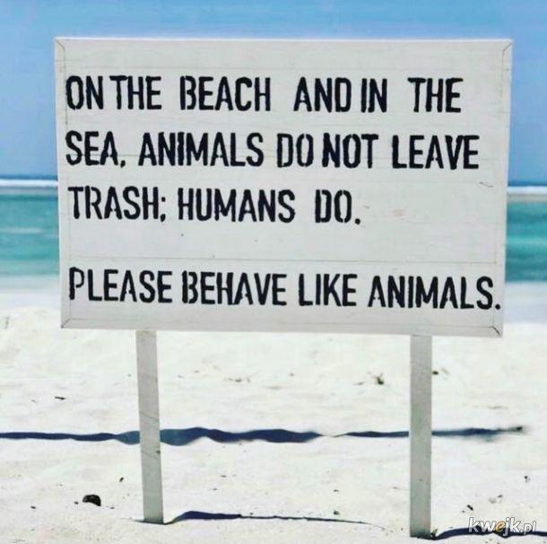 Proszę zachowywać się jak zwierzęta