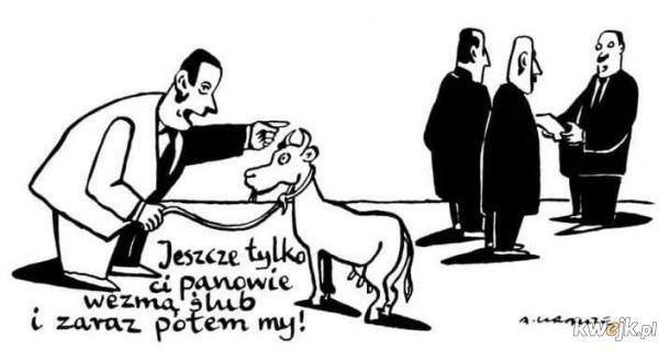 A jeśli koza wyraziła zgodę?